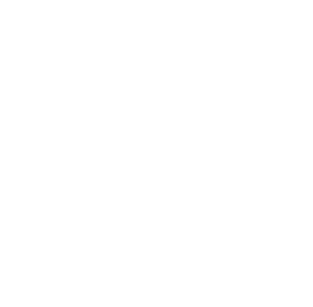 European Social Fund